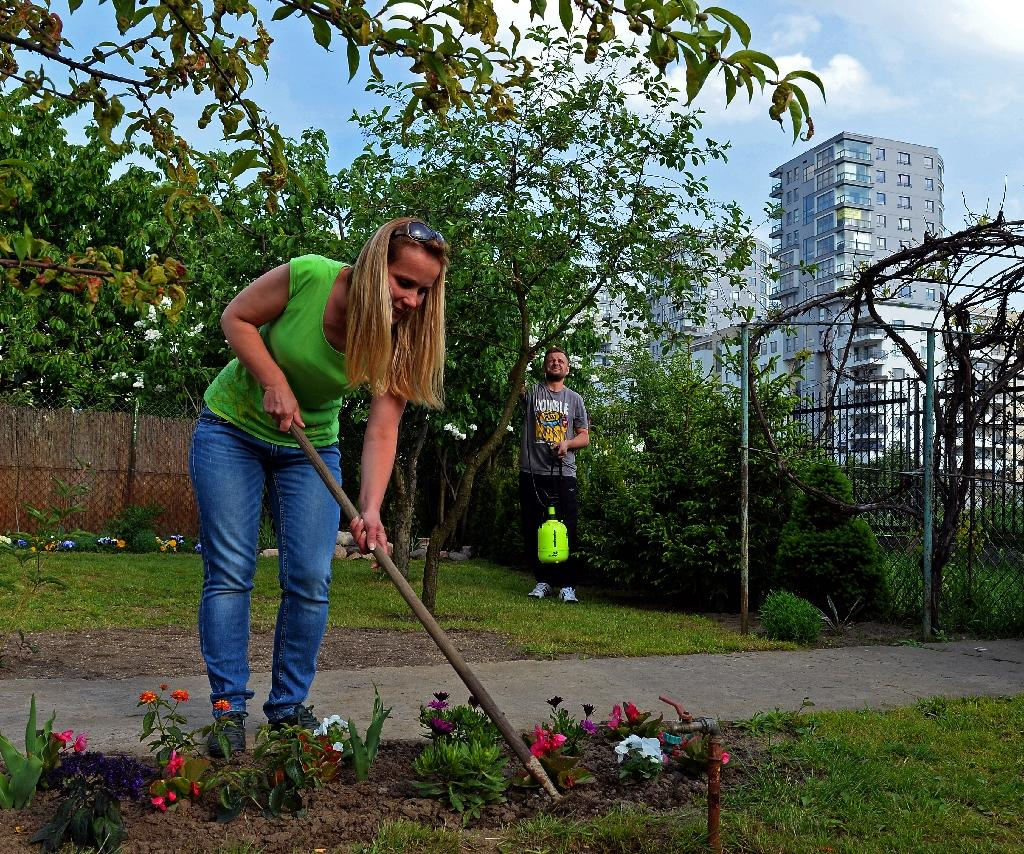 Poland's ongoing love affair with allotments