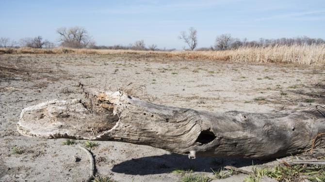 US drought worsens after weeks of improvement