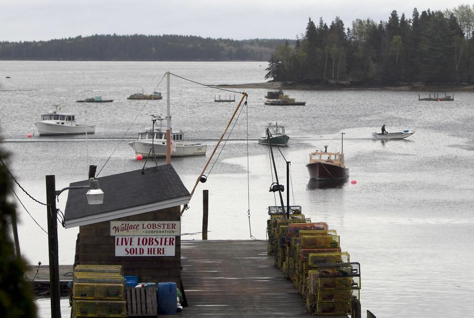 A fisherman motors his skiff past lobster boats moored in Friendship, Maine, Thursday, May 10, 2012. Two lobster boats in the harbor were recently sunk by vandals. (AP Photo/Robert F. Bukaty)