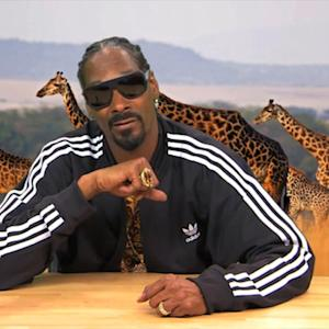 Snoop Dogg Narrating Animal Footage Is Perfect