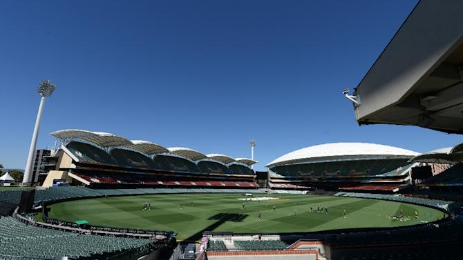 Australia and New Zealand will play cricket's first day-night Test match under lights in Adelaide this November using a pink ball, cricket chiefs announced