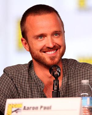 'Breaking Bad's' Aaron Paul Will Appear on 'Myth Busters' - What He's Been Up To