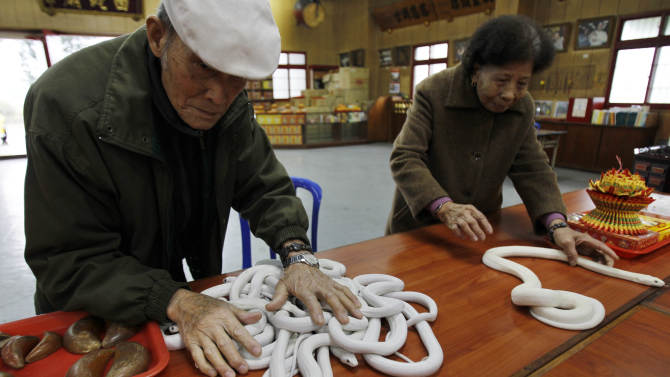 In this photo taken on Wednesday, Jan. 9, 2013, ahead of the Chinese lunar new year of the Snake, following the Chinese zodiac, elderly devotees handle genetically modified, auspicious, white snakes on the altar at the Temple of White Snakes in Taoyuan county, in north western Taiwan. Director of the temple Lo Chin-shih said the new year of the snake would be a time of steady progress, in contrast to the more turbulent nature of the outgoing year of the dragon. The Chinese new year fall on Feb. 10. (AP Photo/Wally Santana)