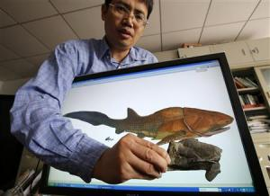 Min Zhu, professor at the Institute of Vertebrate Paleontology and Paleoanthropology, shows a fossil of the Entelognathus primordialis in front of a computer screen showing a life restoration image of the fish in Beijing