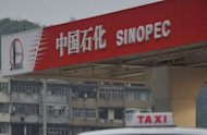 A Sinopec gas station, pictured in Hong Kong. China overtook Japan on the Fortune Global 500 for the first time on the list of the world's biggest companies by revenue, the US business magazine said on Monday