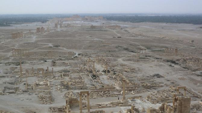 A general view shows the historical city of Palmyra