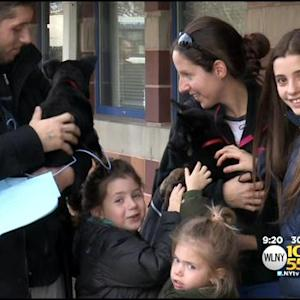 North Shore Animal League Offers Free Pet Adoptions On Black Friday