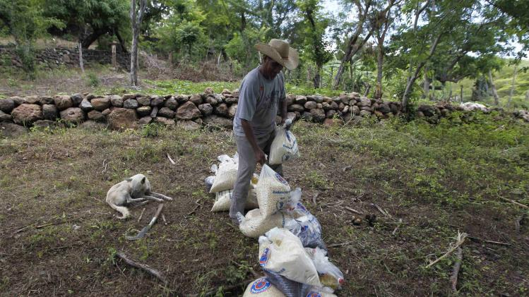 A farmer moves bags of provisions, donated by the United Nations WFP food reserves, during a distribution of food aid to families affected by the drought in the village of Orocuina