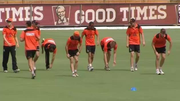 Mr Cricket puts up hand to join Scorchers for semi-final