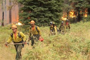 Firefighters hike away from a section of the Rim Fire…