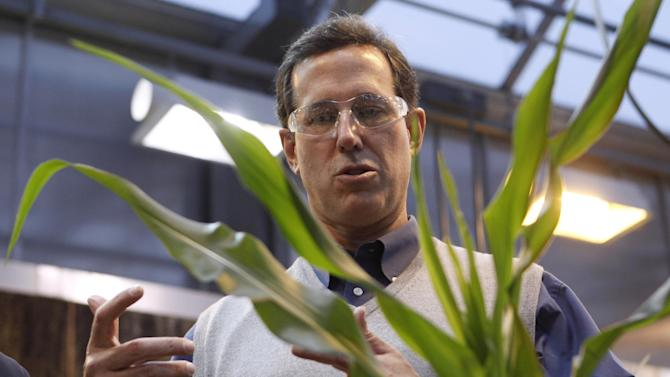 FILE - In this Dec. 14, 2011, file photo, Republican presidential candidate, and former Pennsylvania Sen. Rick Santorum looks at corn plants during a tour of Pioneer Hi-Bred Carver Center in Johnston, Iowa. Santorum called for ending federal support for the ethanol industry before he won the Iowa caucuses the following month. (AP Photo/Chris Carlson, File)