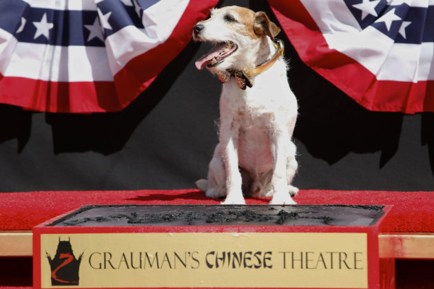 "Canine star Uggie attends the pawprint ceremony for Uggie the dog at Grauman's Chinese Theatre on Monday June 25, 2012 in Los Angeles. Uggie, star of the Oscar-winning film ""The Artist,"" became the fi"
