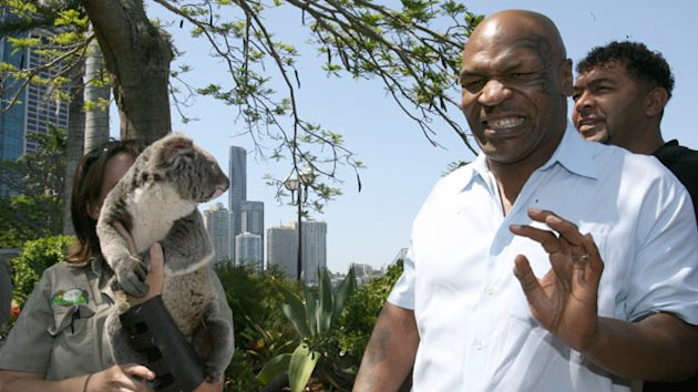 Mike Tyson No Match for Koala (ABC News)