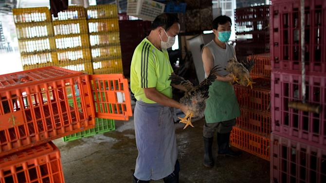Hong Kong Tests Live Chicken Imports As Chinese Bird Flu Deaths Reaches 10