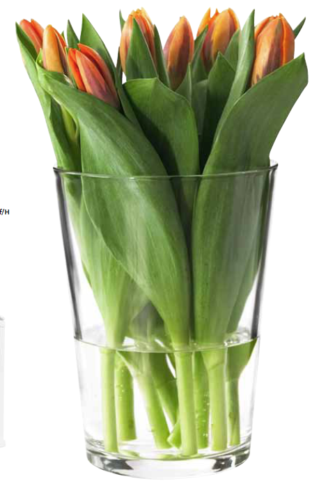 BLADET Vase with Flowers