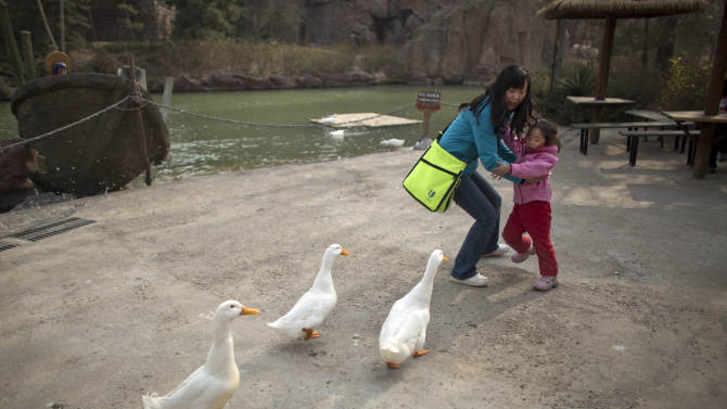 A woman and her daughter are frightened while ducks approach closely for food at an amusement park in Beijing, China, Wednesday, April 3, 2013. Scientists taking a first look at the genetics of the bird flu strain that recently killed two men in China said Wednesday the virus could be harder to track than its better-known cousin H5N1 because it might be able to spread silently among poultry without notice. The bird virus also seems to have adapted to be able to be able to sicken mammals like pigs. (AP Photo/Alexander F. Yuan)