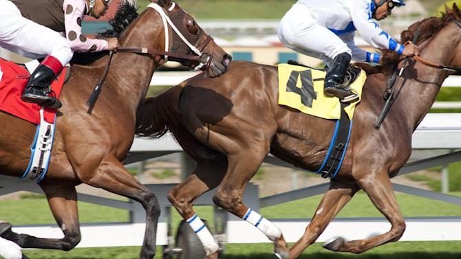 """In this image released by HBO, horses race in a scene from the HBO original series """"Luck.""""  The former director of the American Humane Association's Film and Television Unit sued HBO and the group on Monday, Dec. 31, 2012, claiming she was fired for complaining about the use of drugged, sick and underweight horses on the show """"Luck."""" (AP Photo/HBO, Gusmano Cesaretti)"""