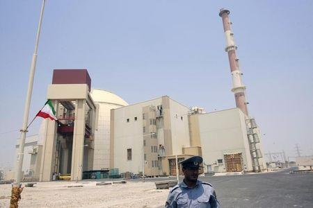 A security official stands in front of the Bushehr nuclear reactor