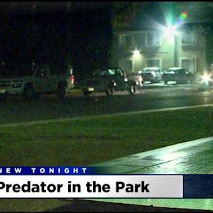 Turlock Police Searching For Man Who Raped Woman At Knifepoint Near Donnelly Park
