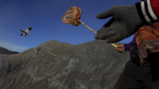 A man holds a net as he tries to catch a chicken after Hindu worshippers threw their offerings during the Kasada Festival into a crater of Mount Bromo in Probolinggo
