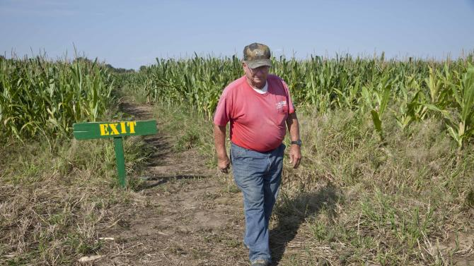 In this photo taken Tuesday, Oct. 2, 2012, farmer Bob Schaefers walks from the exit of a trail through his corn maze near Mayflower, Ark. Devastating spring freezes and this year's historic drought have taken some of the charm out of rustic fall destinations, leaving some corn mazes too short for labyrinth duty, orchards virtually devoid of U-pick apples and fall colors muted. (AP Photo/Danny Johnston)