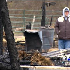 Horse Dies In Fire, Owner Devastated