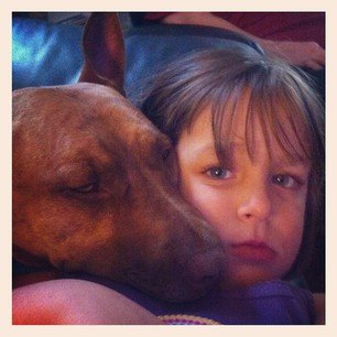 Pit Bulls and kids don't mix? Oh, really?