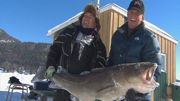 Alain Gagnon and Claude Mathieu had to use a hook to pull this large cod out of the hole in the ice.