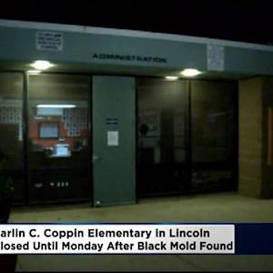 Black Mold Closes Lincoln School For Rest Of Week