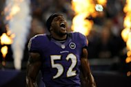 The Baltimore Ravens, off to a 5-1 start in the National Football League campaign, have lost veteran linebacker Ray Lewis, pictured in September 2012, and defensive back Ladarius Webb for the season, coach John Harbaugh said