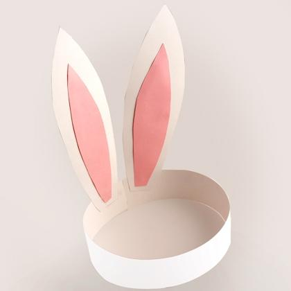 Bunny Ears for Kids