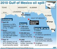 Factfile with map on the 2010 Gulf of Mexico oil spill. US District Judge Carl Barbier has discretion in determining how much of a penalty to impose and whether rig operator Transocean and subcontractor Halliburton, which was responsible for the runaway well's faulty cement job, should pay a portion of the spill's massive cost