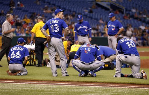Happ hit in head by line drive, Blue Jays beat TB
