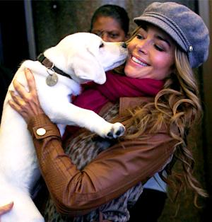 Denise Richards Wants You to Adopt a Pet!