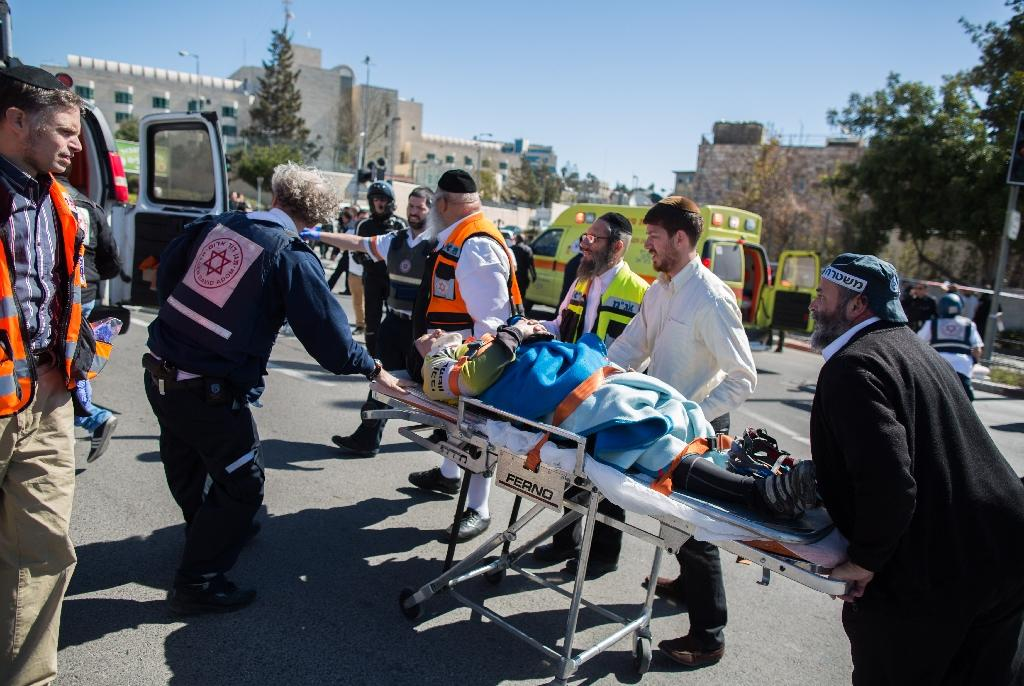 Palestinian driver deliberately killed Israeli: police