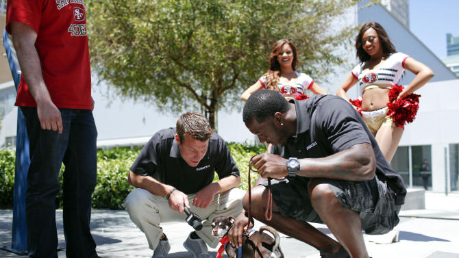 COMMERCIAL IMAGE - In this image provided by Duracell, Patrick Willis, right, gets ready to take Tony, a San Francisco dog, for a walk with Yogi Roth, second left, at the Duracell, Trusted Battery Power of the NFL, Powers event with Patrick Willis in San Francisco on Friday June 8, 2012 in San Francisco. (Photo by Alison Yin /Invision for Duracell/AP Images)