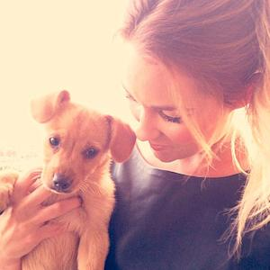 Lauren Conrad adopts 'little cutie' from shelter