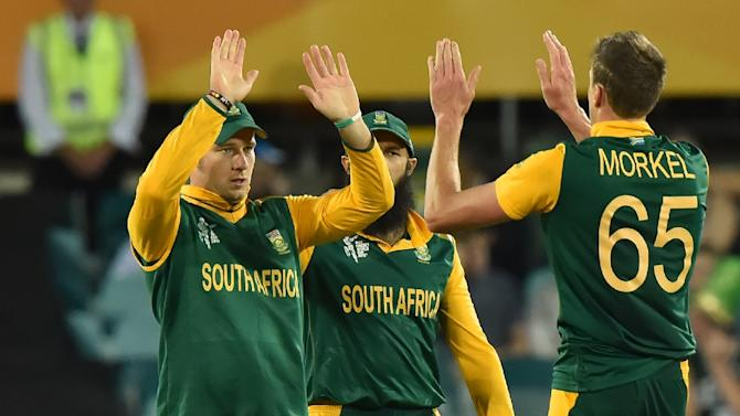 South Africa celebrates after taking a wicket during the 2015 Cricket World Cup match with Ireland on March 3, 2015