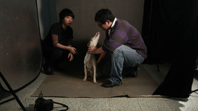 In this photo taken on Monday, April 9, 2012, Taiwanese photographer Tou Chih-kang calms an excited dog  before trying to make a portrait in his makeshift studio moments before the dog is to be put down by lethal injection at a shelter in Taoyuan, northern Taiwan. Tou has been visiting dog shelters for two years now, making human-like portraits that give a sense of dignity and esteem to some 400 canines, in hopes of educating the public on the proper care of pets. This year Taiwanese authorities will kill an estimated 80,000 stray dogs at 38 pounds scattered throughout the island. (AP Photo/Wally Santana)