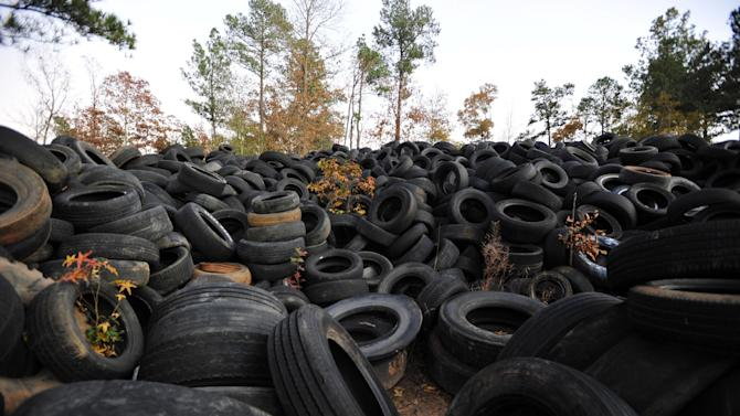 Dumped tires are seen piled in a wooded area near Elloree, S.C.  on Nov. 17, 2011.   The tires started piling up on some county land in South Carolina, little by little, growing to a mound of about a million tires covering several acres of land. Officials say a $400 littering fine is hardly enough to deal with the problem.   (AP Photo/Rainier Ehrhardt)