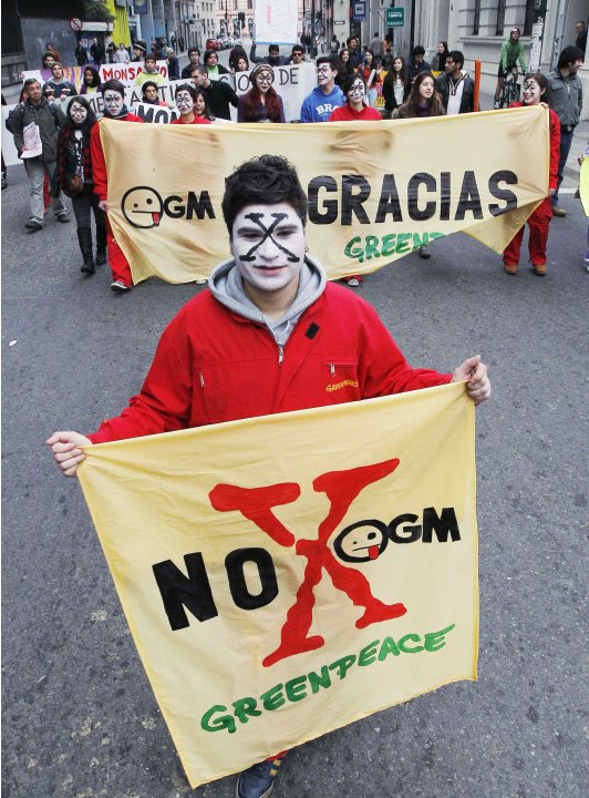 A Greenpeace activist during a rally against Monsanto Co. and GMOs, in Valparaiso