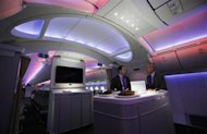 Mark Jenks (R), Boeing's vice president of 787-9 development, speaks to an executive along the archway of the 787 Dreamliner during a demonstration flight of the aircraft at the Singapore Airshow in Singapore February 14, 2012. REUTERS/Edgar Su