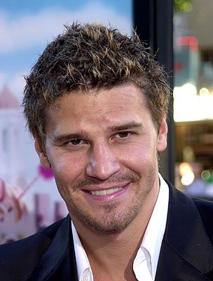 Premiere: David Boreanaz at the Westwood premiere of MGM's Legally Blonde - 6/26/2001