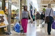 <p>A woman carries shopping bags at South Park mall in Charlotte, North Carolina November 25, 2011. REUTERS/Chris Keane</p>