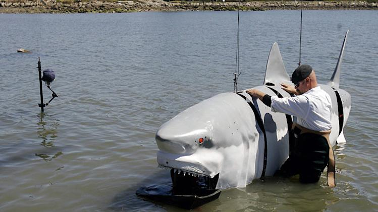 Jamie Hyneman takes a look at the mechanical great white shark he and co-host Adam Savage built. Jamie built a hinged hydraulic spine for the fiberglass frame so it would move like a live shark. Adam recreated the mouth with serrated metal teeth covered with foam to make them look white as seen in MythBusters episode for Shark Week 2008.