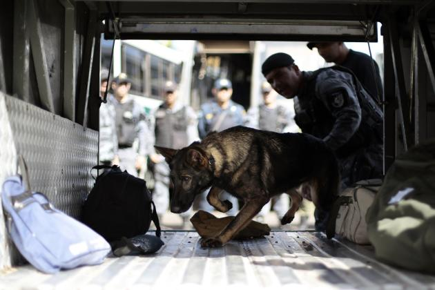 Police train dogs to participate in security operations related to the upcoming 2014 World Cup in Brasilia