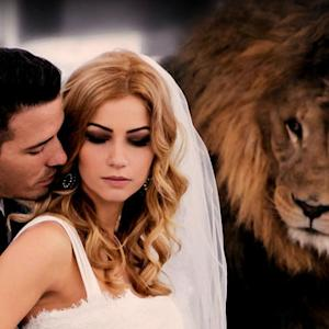 """Exotic animals are the new """"must-have"""" for wedding ceremonies"""