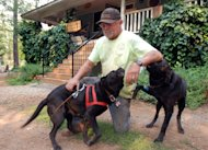 Bob Folsom pets his dogs at his home outside Manton, Calif., Wednesday, Aug. 22, 2012, where he remained to protect his property as the fast-moving Ponderosa Fire bore down within a half-mile of his home over the weekend. Folsom, who works at a local hydroelectric facility, said he has prepared for a fire over the years_ he thinned trees, dug a pond for water storage and installed hydrants for a hose. (AP Photo/Jeff Barnard)