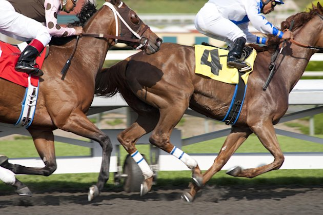 In this image provided by HBO, horses race in a scene from the HBO original series &quot;Luck.&quot; The sport of horse racing is determined to endure the inevitable deaths of its injury-prone animals. But Hollywood has proved it lacks the stomach for it. The HBO TV channel ended the racing series &quot;Luck&quot; after three horses used in the realistic production were injured and euthanized over a period stretching from 2010 to last week. (AP Photo/HBO, Gusmano Cesaretti)