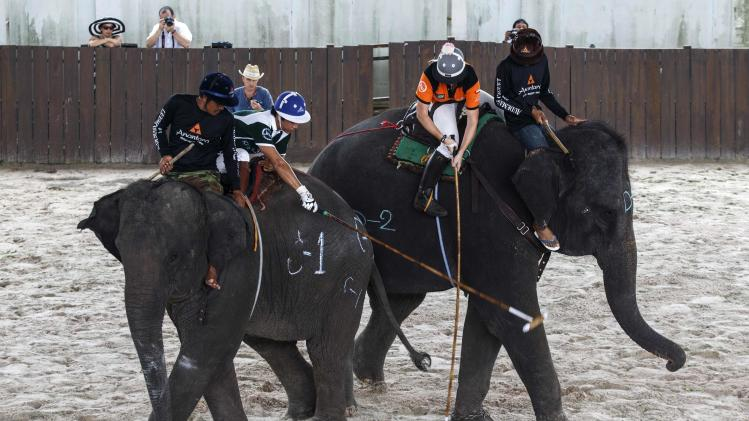 A player from Peninsula fights for the ball with a player from Anantara Arabian Knights during their 2014 King's Cup Elephant Polo Tournament in Samut Prakan province